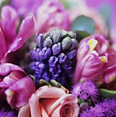 Rose, hyacinth and tulips