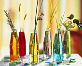 Single grasses in glass bottles with coloured water