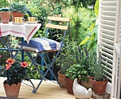 Terrace with garden furniture and herb pots