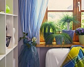 Flower-trimmed blue curtain and potted house plants on windowsill