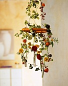 Mobile of hop tendrils and flowers in glass tubes
