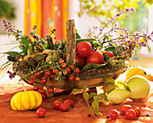 Basket of tomatoes, courgettes, potatoes, basil and rosemary