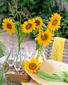 Sonnenblumen und Hühnerhirse in Glasflaschen