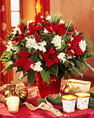 Poinsettia, Tazetta narcissi and white pine