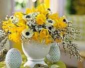 Arrangement of narcissi, broom and anemones