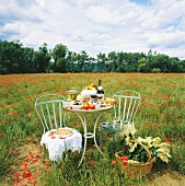 Table laid in poppy field with wine, bread, vegetables, fruit