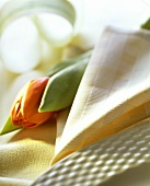 Beige fabric napkin and tulip beside white plate