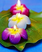 Flower candles as table decoration for Thai meal