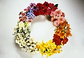 Summery wreath of garden and meadow flowers