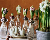 Table decoration with hyacinths for Twelfth Night (Epiphany)