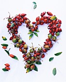 Rose hip heart with leaves
