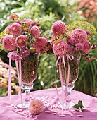 Pink dahlias and fennel in vases (summery)