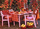 Table decorated with pumpkins and rose hips (autumnal)