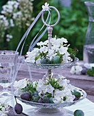 White phlox and plums on tiered stand on table