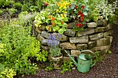 Herb garden with stone wall