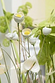 Easter decoration: eggshell flowers and white calla lily