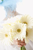 Woman in hat holding white gerberas