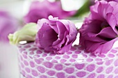 Lisianthus on a gift box