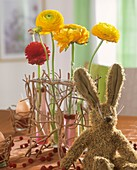 Ranunculuses in test-tubes and toy hare
