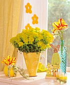 Euphorbia, tulips and Easter decorations on window-sill