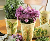 Flowering chives and rosemary in decorative pots