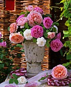 Perfumed English roses in a vase