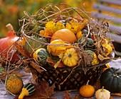 Herbstliches Kürbisstilleben