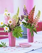 Lupins and marguerites in pink beakers