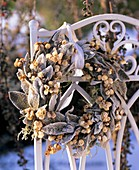 Wreath of Stachys, snowberries and moss with hoar frost