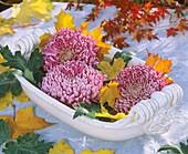 A bowl of chrysanthemums