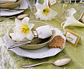 Regal lily table decoration