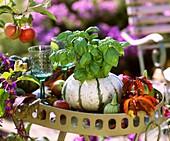 Basil in pumpkin pot
