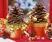 Pine cones sprinkled with gold glitter in terracotta pot