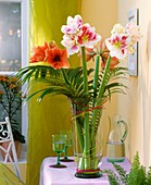 Amaryllis in a vase