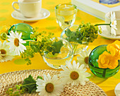 Marguerite and lady's mantle as table decoration