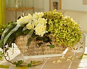 Basket of white roses, asparagus and hydrangeas
