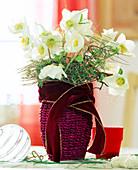 Vase of Christmas roses for Christmas
