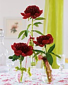 Peonies in individual vases with garlands
