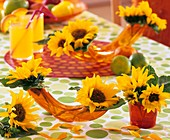 Sunflowers in horizontal vases and glasses