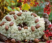Wreath of Iceland moss and cones
