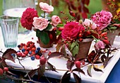 Roses & rose hips, sloes, terracotta pots filled with Oasis
