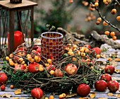 Wreath of apples and ornamental apples