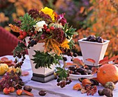 Autumn arrangement: maple leaves, rose hips & ornamental gourds