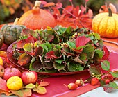 Wreath of strawberries leaves, apples and pumpkins