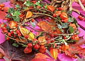 Wreath of ivy, rose hips and Chinese lanterns