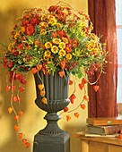 Autumn arrangement of chrysanthemums & Chinese lanterns