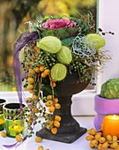 Bloodflower fruits, ornamental cabbage, dates, privet berries