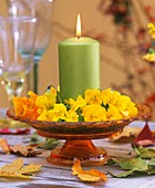 Green candle with wreath of horned violets