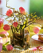 Pink tulips, daisies and corkscrew willow in glass vase
