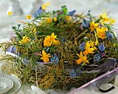 Wreath of hay, daffodils, grape hyacinths and Mimosa